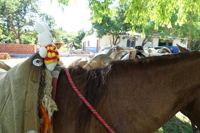 Ko Nientje aan het paardrijden in Pantanal (Brazilië)